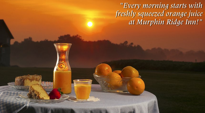 ... the price of your room or cabin accommodations at Murphin Ridge Inn